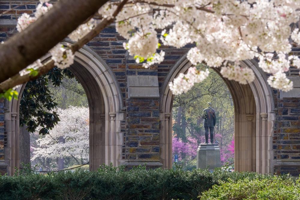 West Campus in spring