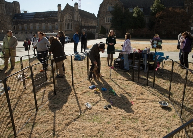 Co-sponsored events on the Chapel Quad